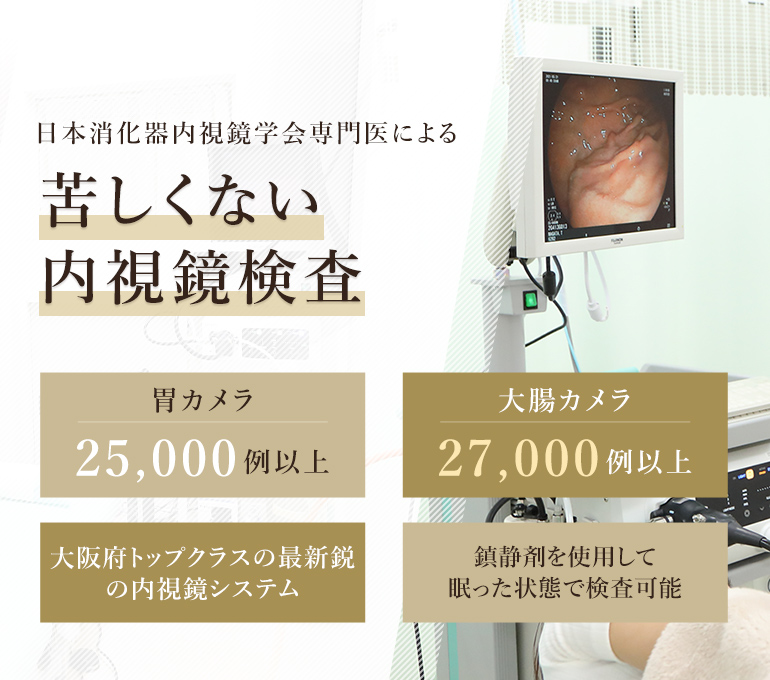 日本消化器内視鏡学会専門医による眠ってできる内視鏡検査